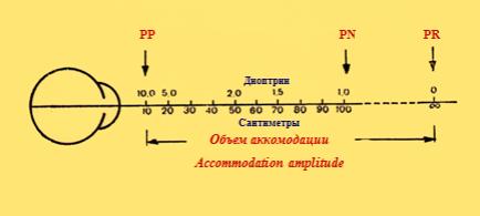 Рисунок 1. Объем абсолютной аккомодации: сумма рефракции в положении ближайшей (punctum proximum, PP) и дальнейшей (punctum remotum, PR) точек ясного зрения.